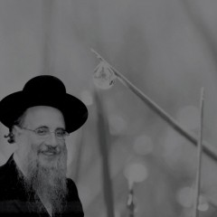 R' Tauber – VaYeira: Dance for Joy!