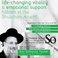 R' Tauber Video – Likutey Halachot #17, Upside Down Day