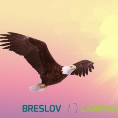 Get Ready For Rosh Hashanah – Soar With Breslov Campus